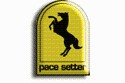 pace_setter_icon.jpg